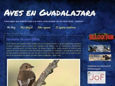 Aves en Guadalajara