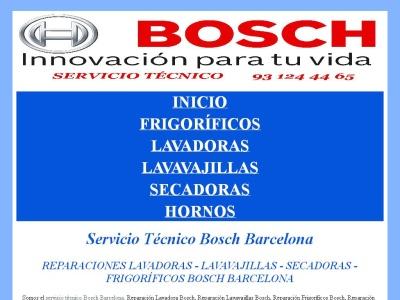 Servicio tecnico bosch